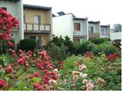 Gießen_Blumenviertel_Gartenansicht