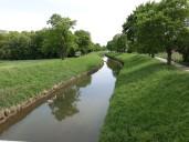 Lorsch: Gewässer und Artenvielfalt